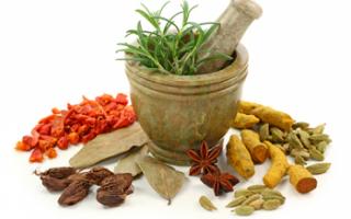 Пряности – виды приправ с описанием, полезные свойства и применение в кулинарии