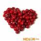 Черёмуха виргинская — описание полезных свойств с фотографиями ягод этого растения