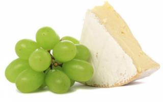 Описание пользы сыра с белой плесенью, а также фото этого французского сыра