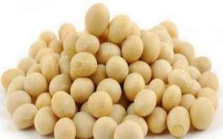 Содержание витамин в сое, ее польза и вред