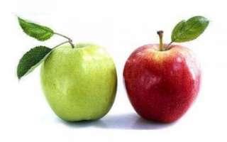 Яблоко — пищевая ценность и калорийность этого фрукта