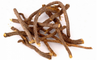 Описание корня солодки, применение продукта для лечения; полезные свойства и противопоказания