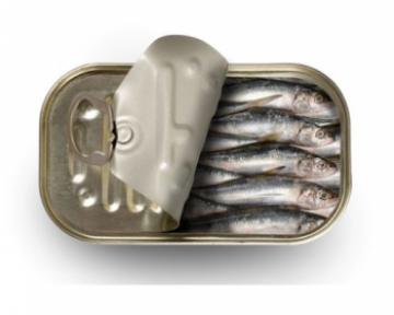 Консервированные сардины — калорийность, польза и вред