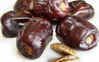 Финики — калорийность, полезные свойства и противопоказания
