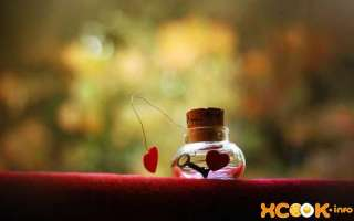 Чем любовь отличается от влюбленности? Что значат эти чувства?