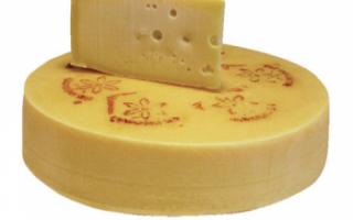Характерные свойства украинского сыра, советы по его выбору и хранению