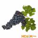 Виноград Мерло (Merlot) — описание сорта, польза и вред