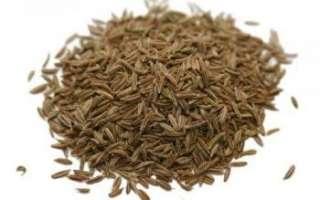 Характеристика пользы и вреда тмина, фото, описание его лечебных свойств; применение масла из этой специи в косметологии и в рецептах