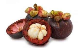 Мангостин — какими свойствами обладает этот фрукт?