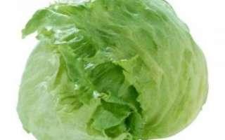 Салат айсберг — калорийность, польза и вред