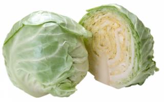 Белокочанная капуста — калорийность, польза и вред
