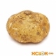 Хикама — характеристика овоща, его фото