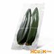 Листья бамбука – их описание с фото; свойства листьев (польза и вред); их использование в кулинарии и лечении; рецепт бамбукового чая
