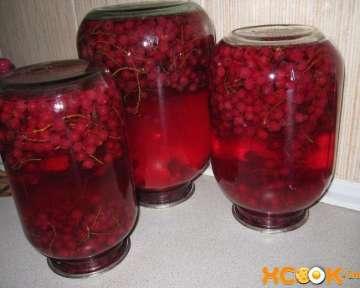 Компот из красной смородины на зиму — пошаговый рецепт приготовления с фото