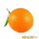 Чинотто (Плоды померанца) — фото этого фрукта, самого растения и его цветов с подробными описаниями