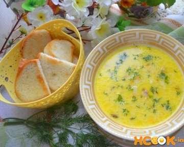 Вкусный сырный суп с копченой курицей – рецепт с пошаговыми фото, как сварить с плавленым сыром