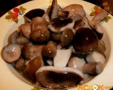 Маринованные подберезовики — пошаговый рецепт с картинками, как мариновать грибы в банках на зиму в домашних условиях