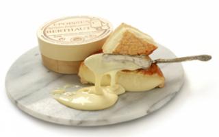 Описание состава и калорийности мягких сыров с фото, приготовление сливочного продукта в домашних условиях, а также рецепты с ним