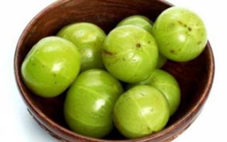 Эмблика лекарственная — в чем заключаются ее полезные свойства, а также каковы противопоказания к применению этого фрукта?