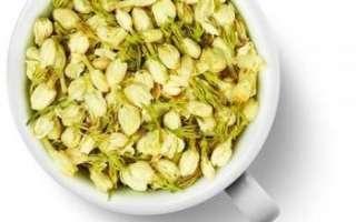 Жасмин – описание с фото цветка; его полезные свойства и противопоказания; польза и вред; рецепты применения в кулинарии и лечении