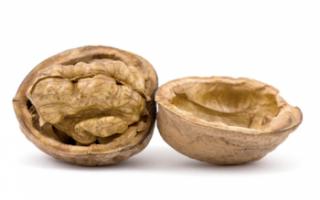 Польза грецких орехов для здоровья, их вред и противопоказания к употреблению