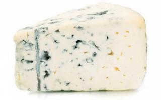 Голубой сыр с плесенью — полезные свойства и рецепт