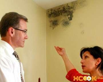 Как в домашних условиях избавиться от черной плесени в ванной народными средствами (на потолке и стенах)?
