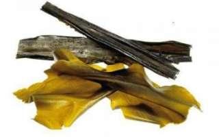 Съедобные водоросли — виды, польза и вред