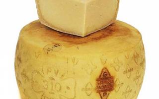 Состав сыра Грана Падано (Grana Padano), его виды с фото, калорийность этого продукта