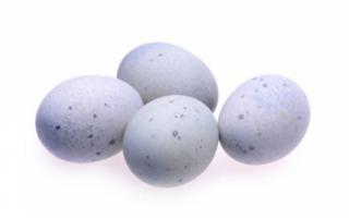 Польза и вред утиного яйца, использование в рецептах блюда