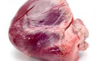 Говяжье сердце – полезные свойства и вред, рецепты приготовления
