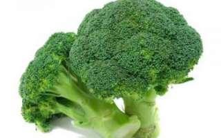 Брокколи — полезные свойства, вред и калорийность