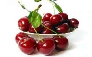 Черешня — подробное описание этого дерева и его плодов, их фото, а также отзывы