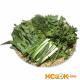 Полная характеристика свежей зелени с фото, а также описание особенностей ее выбора и хранения