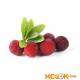 Китайская клубника (восковница красная) — полезные свойства и вред