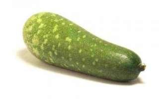 Тыква люффа — характеристика как самого растения, так и его плодов с фото