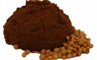 Соевая паста – польза и вред, состав и как приготовить