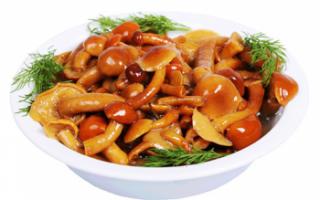 Маринованные грибы – как приготовить в домашних условиях, состав и хранение