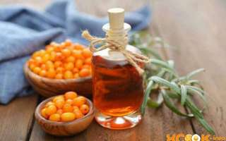 Облепиховое масло в нос при насморке детям и взрослым — польза и применение