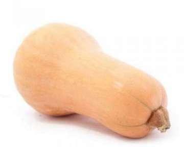 Тыква мускатная — описание сорта с фото, отзывы об этом витаминном овоще
