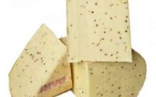 Описание датского сыра Данбо (Danbo), его пищевая ценность и использование в кулинарии