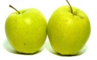 Яблоки голден — описание пользы этого сорта, калорийность фрукта