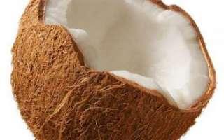 Кокосовый орех — калорийность, полезные свойства и вред