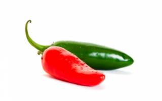 Перец халапеньо — описание острого овоща, а также его семян с фото