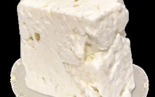 Уникальные свойства сыра панир, а также рецепт домашнего индийского сыра