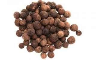 Перец душистый горошком или ямайский перец — описание полезных свойств с фото