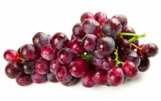 Красный виноград — описание полезных свойств и фото этого фрукта