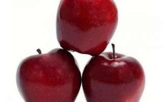 Яблоки Глостер — описание их полезных свойств, фото этих фруктов