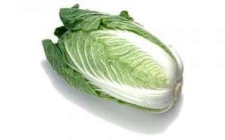 Пекинская капуста — характеристика свойств овоща и содержания в нем витаминов