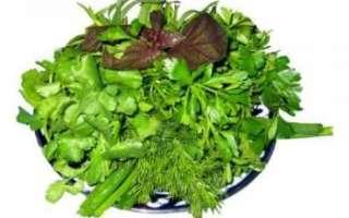 Тонкие травы (петрушка, кервель, эстрагон, шнитт-лук и др.) – описание и свойства смеси; ее польза и вред; использование в лечении и кулинарии